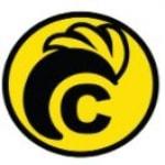 Logo Chickana