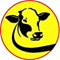 Logo Mashwiat El sherif