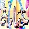 Logo Halawany Hamama