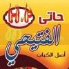 Logo Hatti elfitaihe