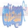 logo Sayed Hanafy