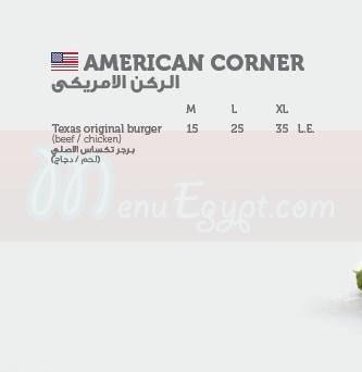 مطعم ساندويتشينى  مصر