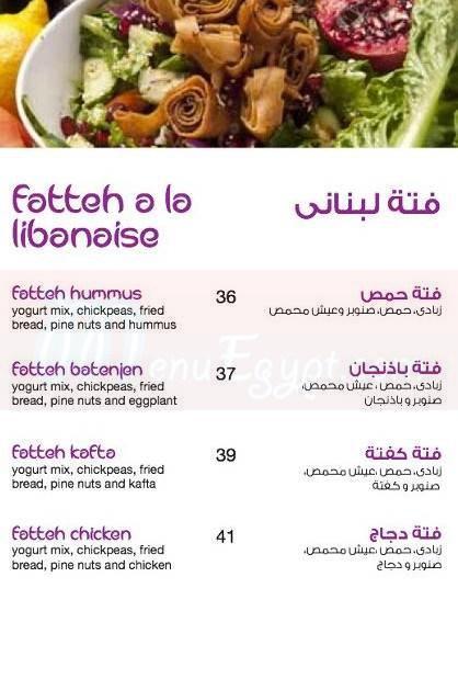 زيتونة مصر